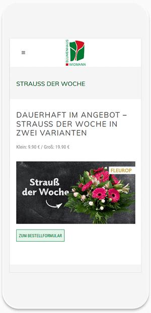 Referenz Website - Widmann 1